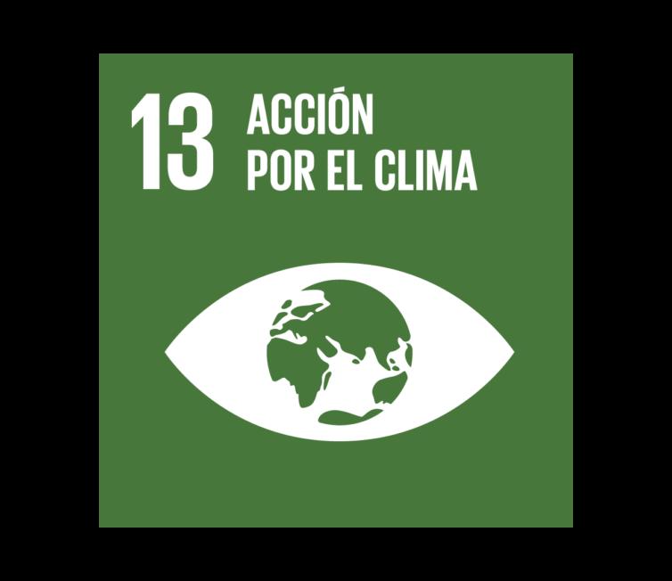13 Acción por el clima